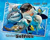 Howard, SELFIES, paintings+++++,GBHR884,#Selfies#, EVERYDAY ,underwater,maritime,dolphins ,sharks,maritime