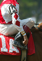 John Velazquez at Saratoga. Saratoga Race Course, Saratoga Racetrack, beautiful horse racing, Thoroughbred racing, horse, equine, racehorse, morning mood