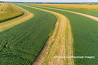63801-09815 Terraced soybean field-aerial Marion Co. IL