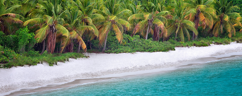 Beach at Jost Van Dyke, British Virgin Islands.