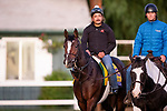 OCT 25: Breeders' Cup Classic entrant Yoshida, trained by William I. Mott, at Santa Anita Park in Arcadia, California on Oct 25, 2019. Evers/Eclipse Sportswire/Breeders' Cup