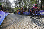 Riders on the the first ascent of the Kemmelberg during the 2019 Gent-Wevelgem in Flanders Fields running 252km from Deinze to Wevelgem, Belgium. 31st March 2019.<br /> Picture: Eoin Clarke | Cyclefile<br /> <br /> All photos usage must carry mandatory copyright credit (© Cyclefile | Eoin Clarke)
