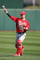 Yasmani Grandal of the Cincinnati Reds warms up before a spring training game against the Los Angeles Angels at Tempe Diablo Stadium on March 1, 2011  in Tempe, Arizona. .Photo by:  Bill Mitchell/Four Seam Images.