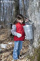 Little girl peering inside sap bucket on a maple tree