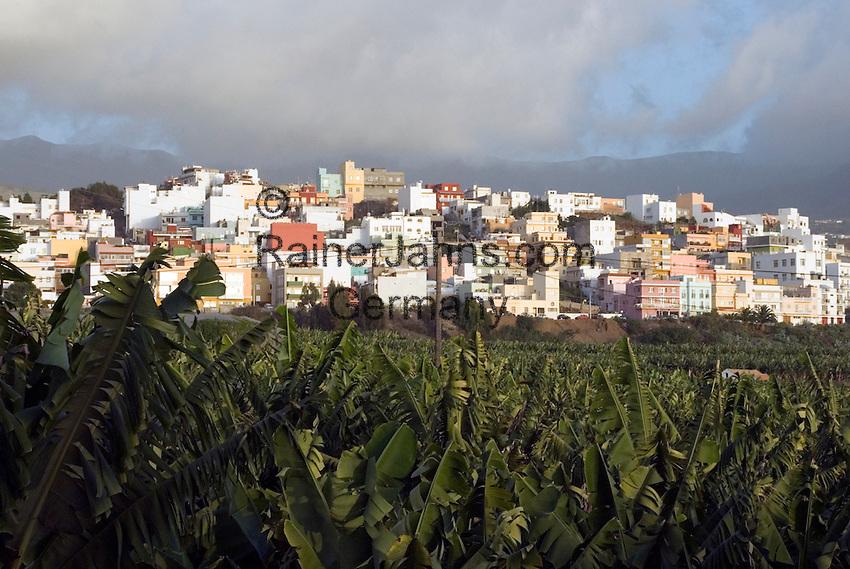 Spain, Canary Islands, La Palma, Los Llanos de Aridane: overview