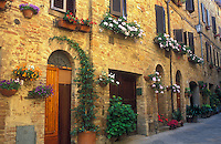 Italy, Pienza, Tuscany, flowerpots and flowers hung along a wall with doorways