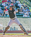 1 September 2014: Tri-City ValleyCats catcher Alfredo Gonzalez in action against the Vermont Lake Monsters at Centennial Field in Burlington, Vermont. The ValleyCats defeated the Lake Monsters 3-2 in NY Penn League play. Mandatory Credit: Ed Wolfstein Photo *** RAW Image File Available ****