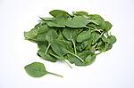 Sakata Spinach varieties