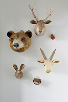 Six animal heads are displayed on the wall