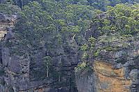 Two hours from Sydney, in the Blue Mountains culminating at 1111 meters altitude, eucalyptus forests cover the mountain slopes. The Australian mountain range stretches over 3,500 km in the east of the country. This rocky barrier harnesses the coastal rains of the Pacific Ocean. It is the source of water and thus the richness of the east coast of Australia.///Dans les montagnes bleues qui culminent à 1111 mètres d'altitude, à deux heures de Sydney, les forêts d'eucalyptus recouvrent les pentes des montagnes. La cordillère australienne s'étend sur 3500km à l'Est du pays. Cette barrière rocheuse capte les précipitations côtières de l'océan Pacifique. Elle est la source d'alimentation en eau, donc de richesse de la côte Est du pays.