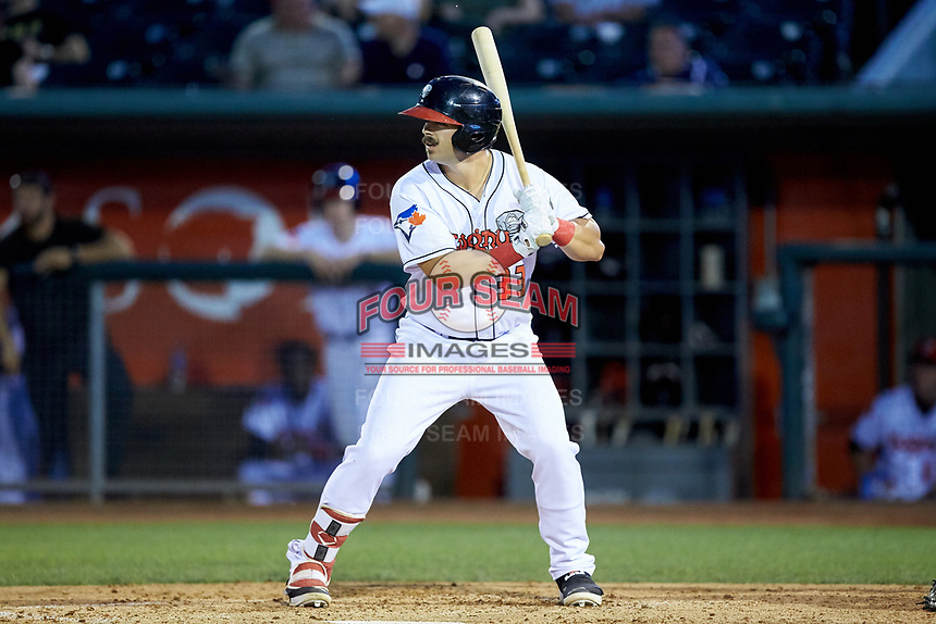 Brock Lundquist (33) of the Lansing Lugnuts at bat against the South Bend Cubs at Cooley Law School Stadium on June 15, 2018 in Lansing, Michigan. The Lugnuts defeated the Cubs 6-4.  (Brian Westerholt/Four Seam Images)