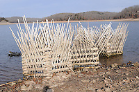 NWA Democrat-Gazette/FLIP PUTTHOFF <br /> Fish attractors sit on the shoreline Jan. 7 2017 during a low lake level.