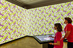 Immersion Room at Cooper Hewitt,  Smithsonian Design Museum. Photo: Allison Hale.
