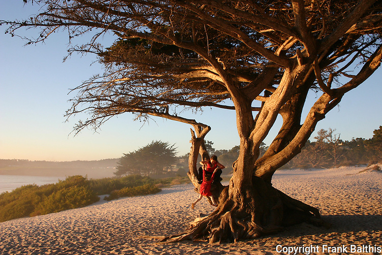 Carmel beach, woman and girl in tree before sunset