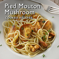 Food Pictures of Pied de Mouton  Cooked Recipe Dishes. Mushroom Recipe Food Images & Photos