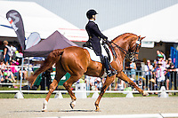 11-2015 NZL-Horse of the Year Show