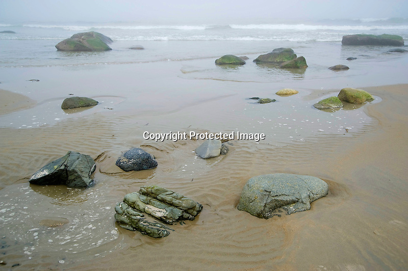 Rocks and Boulders on a Foggy Beach during the Incoming Tide in Wells, Maine