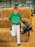 Junior Goat Agility contest, Saturday at the 80th Amador County Fair, Plymouth, Calif.<br /> .<br /> .<br /> .<br /> .<br /> #AmadorCountyFair, #1SmallCountyFair, #PlymouthCalifornia, #TourAmador, #VisitAmador