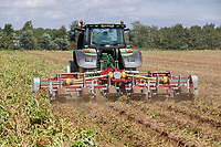 Front & rear toppper & press wheels flailing pre  desiccation - Lincolnshire, August