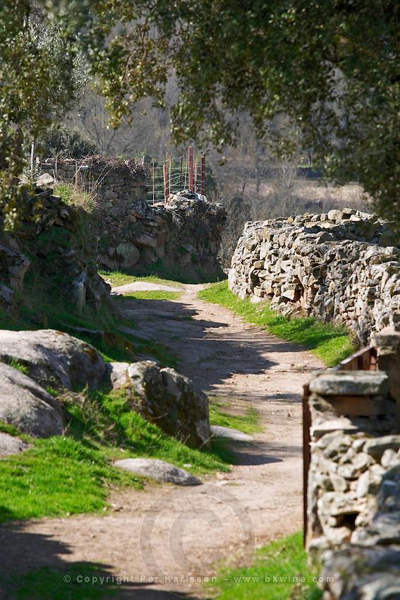 a winding country path and stone walls Bodega La Setera, DO Arribes del Duero spain castile and leon