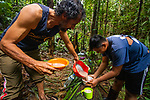 Jaguar (Panthera onca) biologists, Milton Yacelga and Jonathan Solis, making food in field camp in tropical rainforest, Kaminando Habitat Connectivity Initiative, Mamoni Valley, Panama