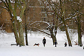 A mother with two children and a dog walks in the snow on Hampstead Heath, London.