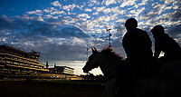 LOUISVILLE, KENTUCKY - MAY 03: Horses exercise in the morning at Churchill Downs on May 3, 2017 in Louisville, Kentucky. (Photo by Jon Durr/Eclipse Sportswire/Getty Images)