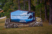 All Talimena Scenic Drive photos