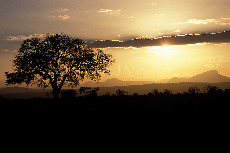Sunset at Mikumi. Mikumi National Park, Tanzania