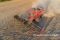 63801-13512 Harvesting soybeans in fall-aerial  Marion Co. IL