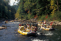 AJ4125, white water rafting, Chattooga River, North Georgia, Appalachian Mountains, People in yellow rafts white water rafting on the Chattooga Wild & Scenic River in the state of Georgia.