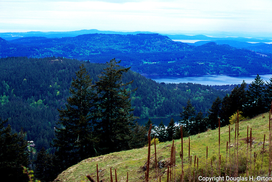 Orcas Island, San Juan Islands, Washington State offers mountain hiking in Moran State Park.  This hike up Mount Constitution has wonderful views across lakes and inlets of the San Juan Islands.  Travel ideas www.douglasortonimaging.com