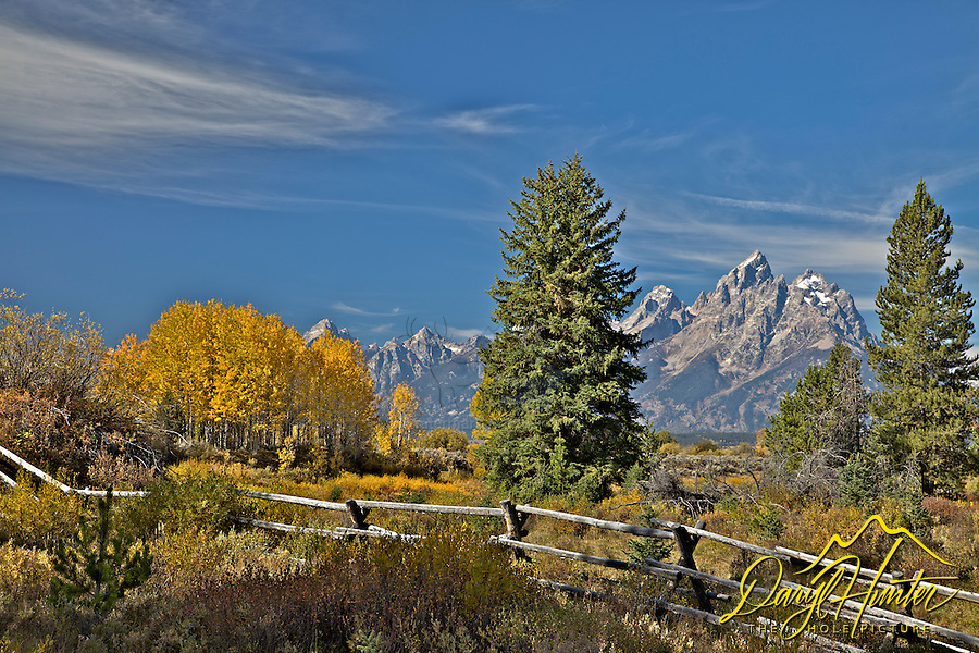 Buckrail Fence, Fall, Grand Teton National Park