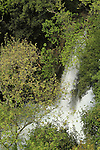 Golan Heights, the waterfall at Hermon Stream (Banias) Nature Reserve