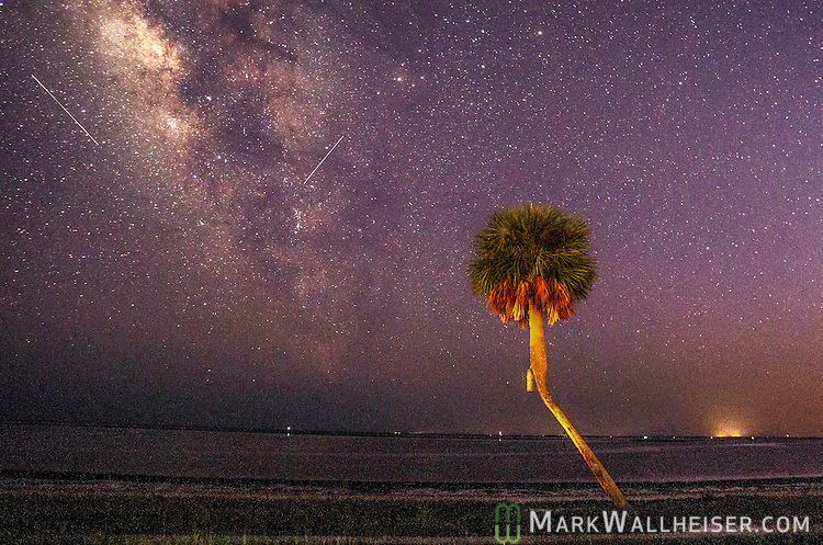 Two meteors streak the sky over Shell Point Beach in Wakulla County, Florida along the Forgotten Coast of the Florida panhandle during the Perseid meteor shower