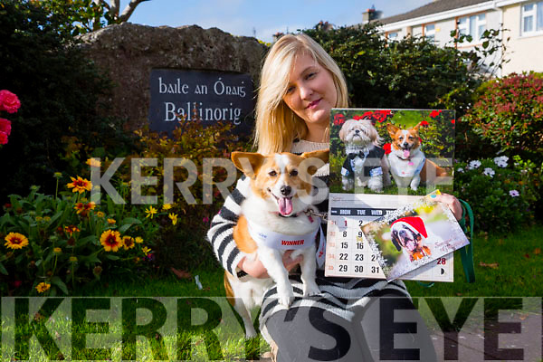 "Launching the Christmas cards and a 2016 calendar in aid of The Animal Help Net Kerry was ""Ginger"" who won the Nose Of Tralee 2015 with her owner Stacey Wallace, Ballinorig, Tralee"