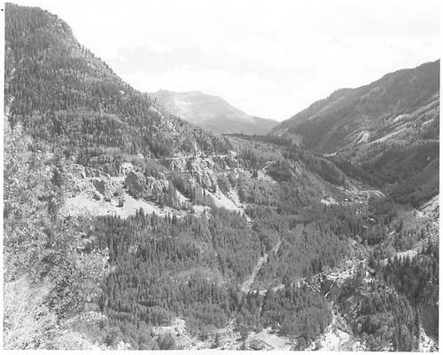 Photo shows RGS from Butterfly trestle across to High Line.  Four of the six bridges can be seen.<br /> RGS  Ophir Loop, CO