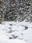 Snow covers much of the rivers in Yellowstone in the winter.