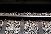 SÃO PAULO,SP, 06.10.2015 - ACIDENTE-SP - Usuário do metrô de São Paulo é socorrida com vida após cair na via na momentos antes da composição do metro chegar a plataforma do Metro Belém na região leste da cidade de São Paulo nesta quarta-feira, 07. Vitima foi encaminhada para hospital da região. (Foto: Fernando Nascimento/Brazil Photo Press)