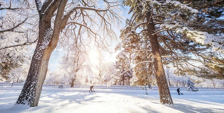 1701-04 GCS Snow_0013<br /> <br /> 1701-04 GCS Snow<br /> <br /> December 9, 2016<br /> <br /> Photography by Nate Edwards/BYU<br /> <br /> © BYU PHOTO 2016<br /> All Rights Reserved<br /> photo@byu.edu  (801)422-7322