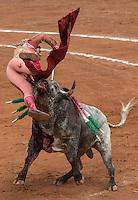 10a Corrida de la Temporada en la México 2014-2015