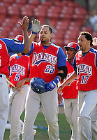 Ronny Paulino / Dominican Republic is greeted by teammates after hitting a homerun in the first inning of the Day 4 game against Venezuela - 2009 Caribbean Series, Mexicali..Photo by:  Bill Mitchell/Four Seam Images