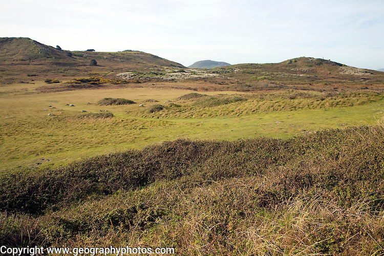 View of the common, Island of Herm, Channel Islands, Great Britain