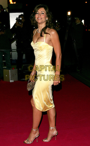 ELIZABETH HURLEY .At the Beauty Week Launch,.V&A Victoria and Albert Museum, London, .24th January 2005..full length yellow dress liz .Ref: BR.www.capitalpictures.com.sales@capitalpictures.com.©Capital Pictures.