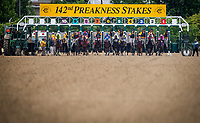 BALTIMORE, MD - MAY 20:  The Field for thePreakness Stakes breaks from the gate at Pimlico Race Course on May 20, 2017 in Baltimore, Maryland. (Photo by Alex Evers/Eclipse Sportswire/Getty Images)