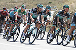 Bora-Hansgrohe in action during Stage 5 of La Vuelta 2019 running 170.7km from L'Eliana to Observatorio Astrofisico de Javalambre, Spain. 28th August 2019.<br /> Picture: Luis Angel Gomez/Photogomezsport | Cyclefile<br /> <br /> All photos usage must carry mandatory copyright credit (© Cyclefile | Luis Angel Gomez/Photogomezsport)