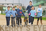 Pictured practicing for a race between a greyhound and a runner from St Brendans athlethic club during their fundraising night at Kingdom Greyhound stadium, From left Niall Marley, Conn Marley, Shane Lowth, Darragh Lowth,  Aidan Nolan, Cona?gh Fitzgerald, Grainne Raggett, and the greyhound is Bearhaven Sal.