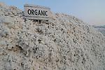 INDIA Madhya Pradesh, organic cotton project bioRe in Kasrawad, storage place at ginning factory / INDIEN Madhya Pradesh, Biobaumwolle Lagerplatz und Entkernungsfabrik der bioRe India, Projekt fuer biodynamischen Anbau von Baumwolle in Kasrawad