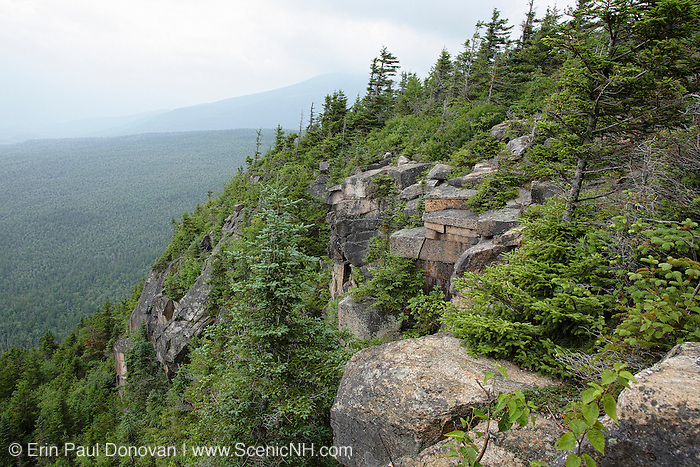 The rocky summit of Zeacliff in the White Mountains, New Hampshire during the summer months. Zeacliff is located along the Appalachian Trail (Twinway Trail).
