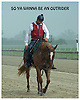 So Ya Wanna Be a Outrider - Lance at Delaware Park on 6/13/09